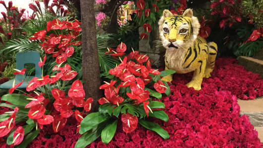 Rose Parade Floats at the Fiesta Floats Headquarters in Irwindale, CA