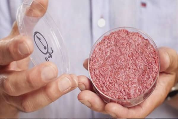 How 'cultured meat' can turn one cow into 175M burgers