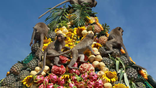 Asian markets closed for Lunar New Year, which heralds the Year of the Monkey.