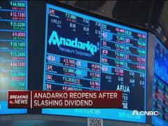 Anadarko cuts dividend