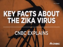 The Zika virus: Key facts you need to know