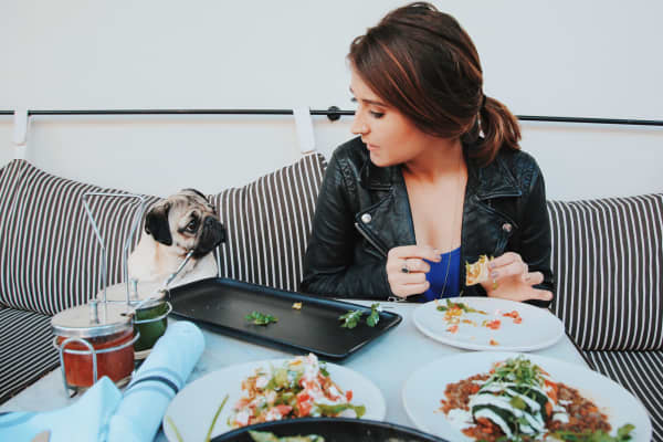 Doug the Pug and Leslie Mosier, founder and proud owner.