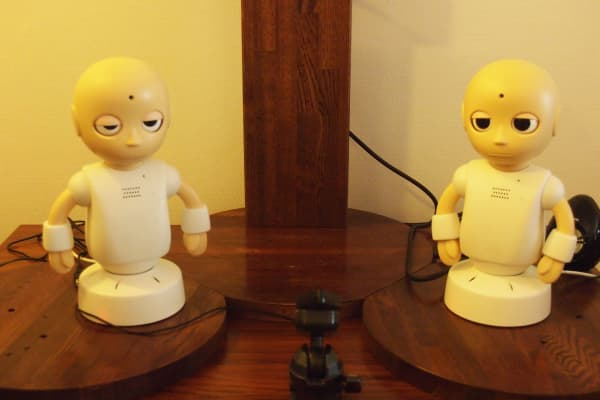 The small voice-enabled robot CommU was also created by Hiroshi Ishiguro.