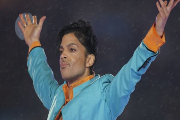 Prince's sister claims pop star had no will