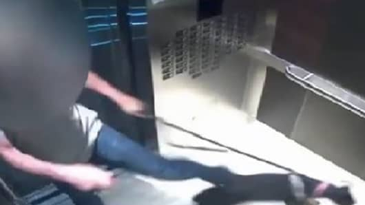 Des Hague caught on video kicking a friend's dog in an elevator.
