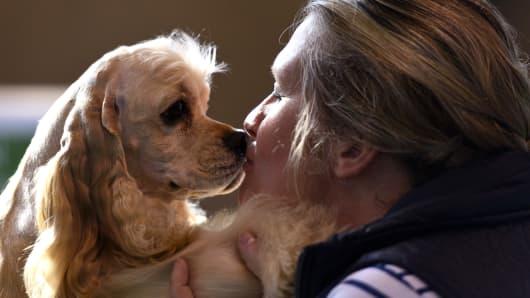 Dogs May Spot Low Blood Sugar in Diabetics