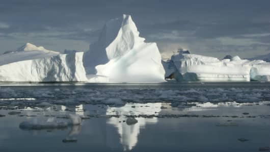 Icebergs that have newly calved from glacier fronts (Marguerite Bay, western Antarctic Peninsula).