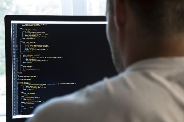 Programmer, code writer
