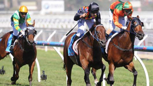 Dead heat horse race