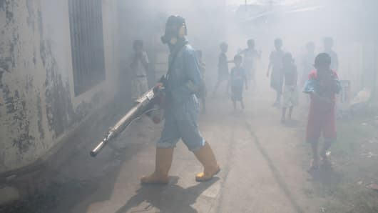 Zika virus declared no longer an worldwide emergency by WHO
