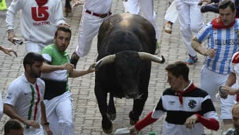 Participants run in front of Fuente Ymbro's bulls during the fourth 'encierro' (bull-run) of the San Fermin Festival in Pamplona, northern Spain, on July 10, 2015.