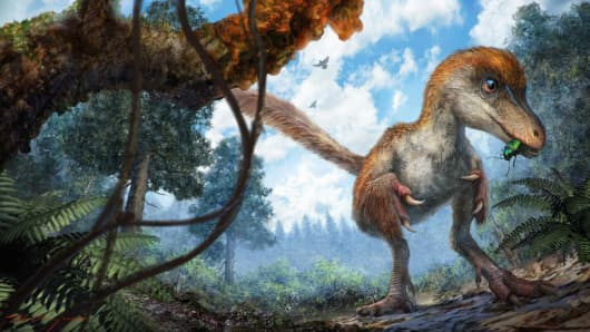 This reconstruction depicts a small coelurosaur approaching a resin-coated branch on the forest floor.