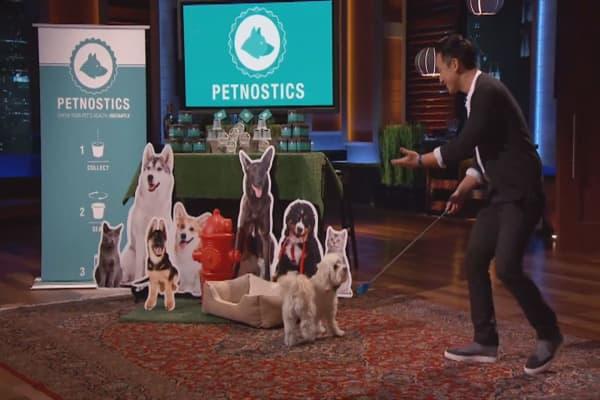 The Logistics of Collecting Pet Urine