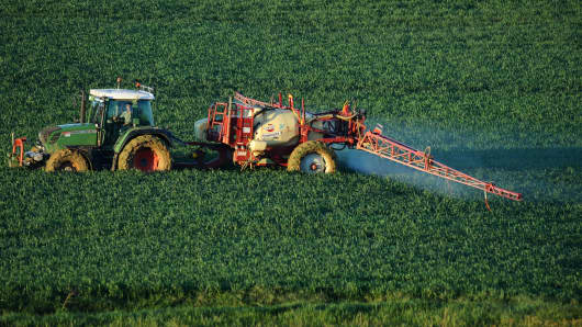 A farmer sprays a chemical fertilizer on his wheat field