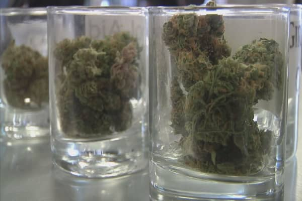 Pot pushing out beer sales