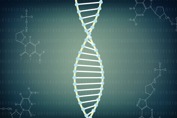 As synthetic DNA is being researched, ethical questions are coming to surface