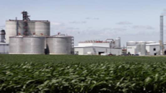 Fields of corn surround the Golden Grain Energy ethanol plant, in Mason City, Iowa.