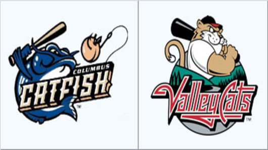 catfish_vs_valleycats.jpg