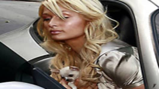 Paris Hilton with her Chihuahua