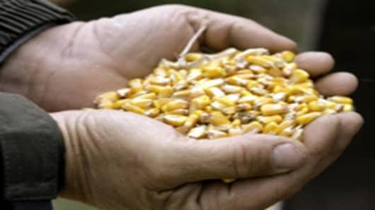 ethanol_corn_in_hand2.jpg