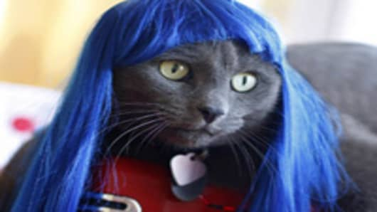 Kitty Wig