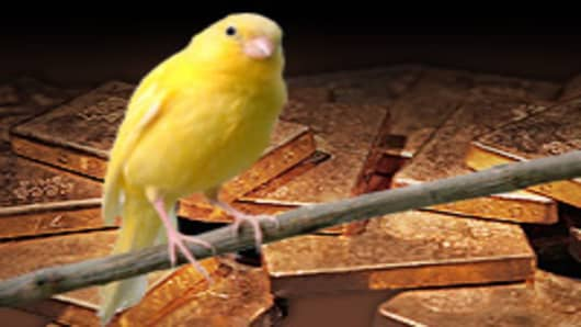 canary_gold2_200.jpg