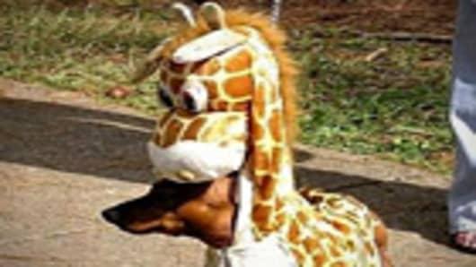 halloween_dog_giraffe_140.jpg