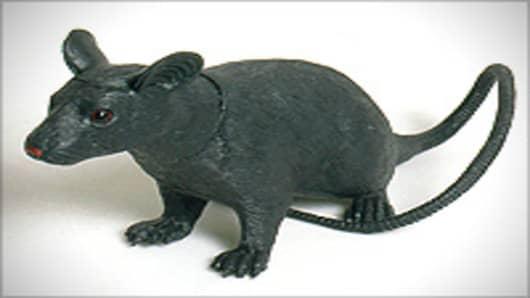 rat_rubber_200.jpg