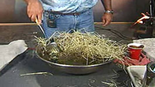 Daryl Carpenter demonstrates how ordinary hay can be used to remove oil from water.