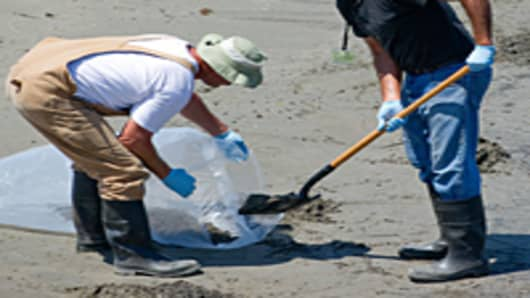 Workers shovel oiled sand hit by the BP Deepwater Horizon oil spill from the Gulf of Mexico to be disposed as cleanup crews work to clean the beach at Grand Isle State Park in Grand Isle, Louisiana, June 13, 2010.