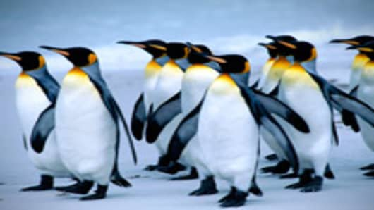 penguins_200.jpg