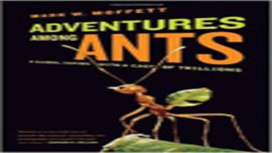 adventures_among_ants.jpg