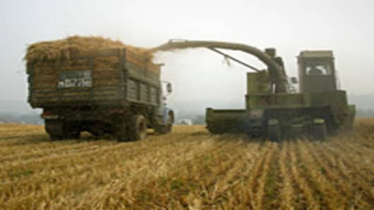 A self-propelled combine harvestes on a field near a village of Meshcherskoye, some 50 km south of Moscow.