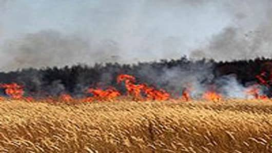 Flames are seen in a field at the edge of Voronezh, central Russia, on July 31, 2010.