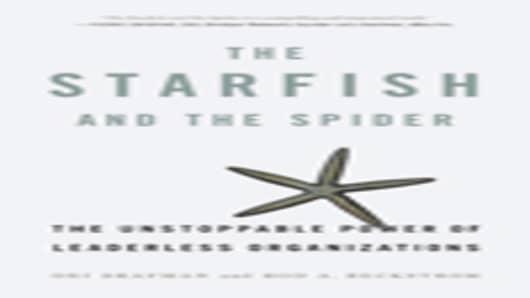 starfish_spider_100.jpg