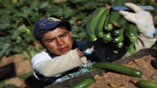 migrant_worker_200.jpg