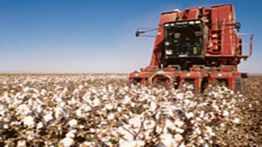 cotton_crop_200.jpg