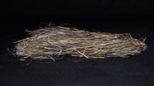 Raw flax stock