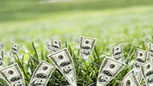 dollars_grass_200.jpg