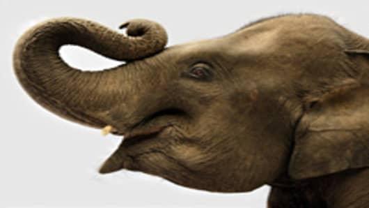 elephant_200.jpg