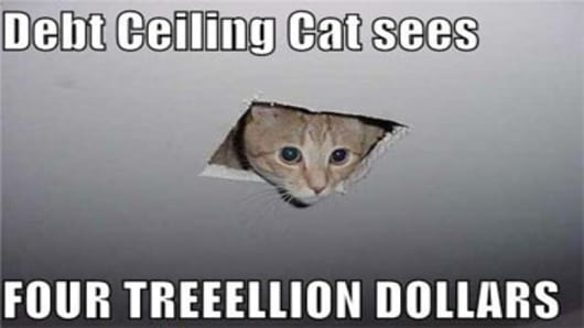 debt_ceiling_cat_350.jpg