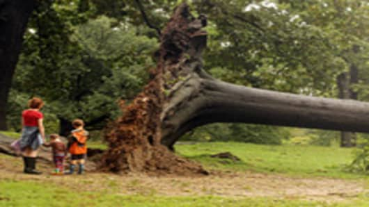 A family inspects a downed tree in Central Park after Hurricane Irene dumped more than six inches of rain on August 28, 2011 in New York City.