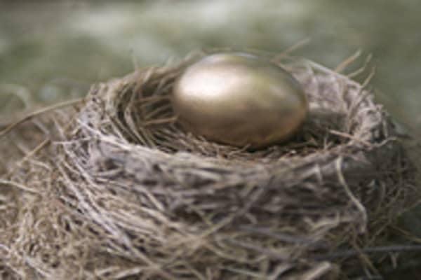golden-egg-nest-200.jpg