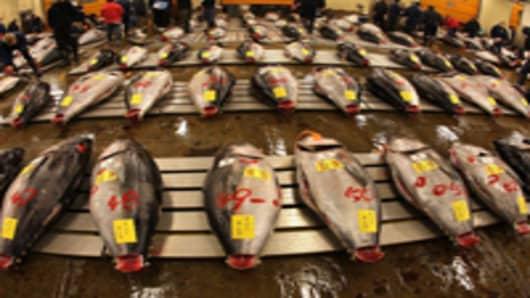 tuna-auction_200.jpg
