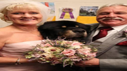 Westminster Kennel Club wedding