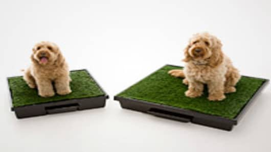 Pet Loo and Mini Wee