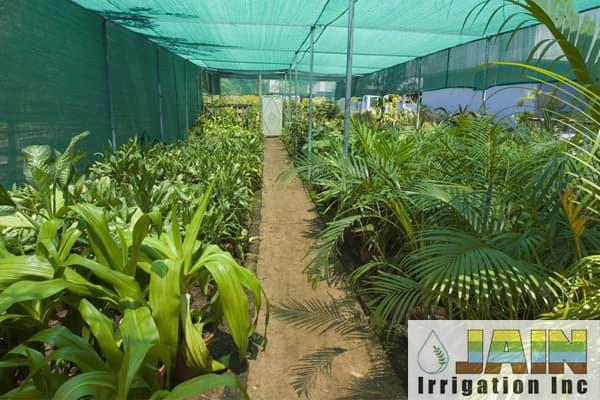 clean-tech-byb-jain-irrigation.jpg
