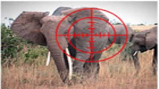 Elephant in crosshairs