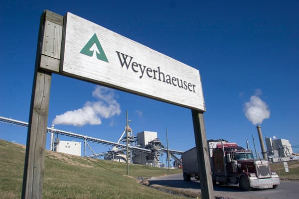 Weyerhaeuser is the second-largest owner of timberland in the U.S. It currently manages roughly 20.5 million acres of forests in which it grows and harvests trees for use as lumber, other wood and building products, as well as pulp and paper. To Cramer, Weyerhaeuser is more profitable and productive than its competitors. He thinks its successes are, in a large part, due to its fabulous management team.The timber company's stock sports a 3.1 percent dividend yield. It's cheap, too, trading at a 3