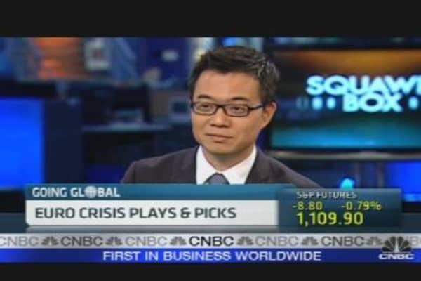 Euro Crisis Stock Picks